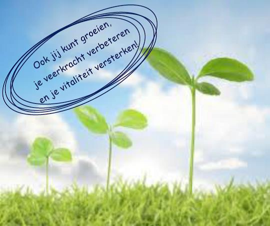 Veerkracht&Vitaliteit